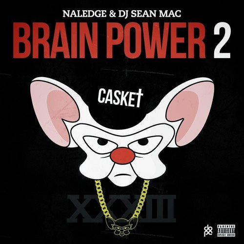 naledge-brain-power-2